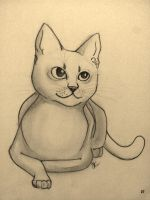 Silvestre by KittyKlaws