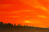 the_orange_sky.png