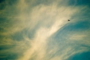 flight by natethan
