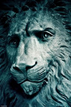 Lion of Stone by kmkessick