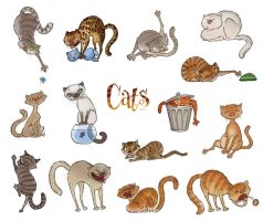 Cats by anna-lumbricus
