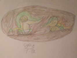 Request: Snivy and Cnydaquill Sink by thesupersmashbro