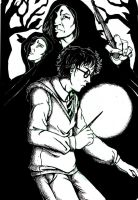Harry Potter and the fugitives by straywillowisp