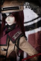 RD Military Style series V by Ringdoll