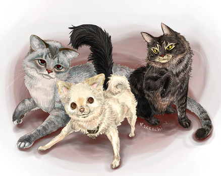 gus, ralphie, abby by sketchi