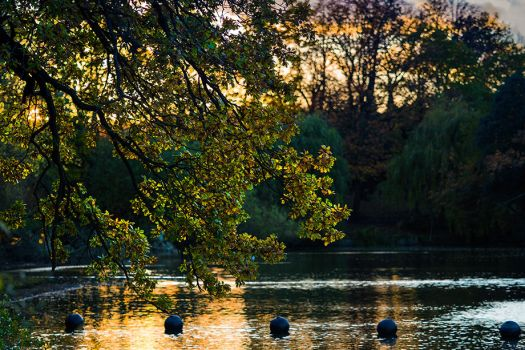 A walk in Crystal Palace Park 3 by Mentos18