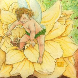Summer Fairy by Caravaggia