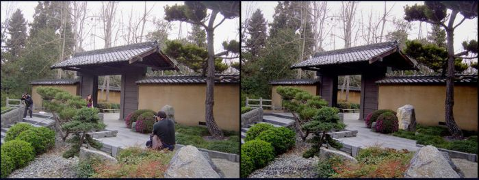 Japanese Garden - Before After by AndySerrano