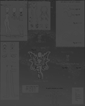 Zyrri Species Guide  - V.2 RETIRED by Moonsii