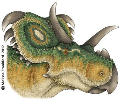 Medusaceratops by mmfrankford