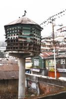 Birdhouse (Darjeeling, India) by drewhoshkiw