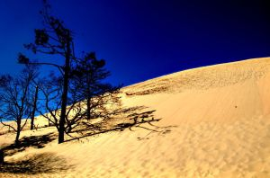 Dune du Pylat 31 by glad2626