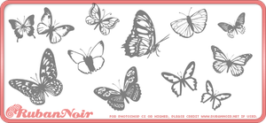 Butterflies Brushes by Lady-Himiko