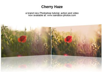 Cherry Haze Photoshop Action by Maegondo