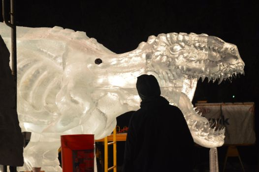 Ice sculpture 78 by Roxy-the-art-nut