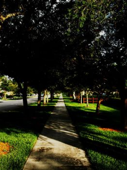 Pathway by differing-opinions