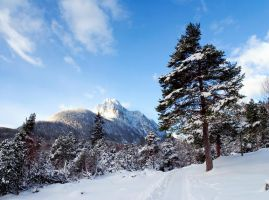 The Alps Winter 2007 III by mutrus
