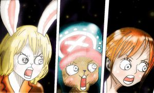 One Piece Chapter 855  Carrot Chopper Nami Face by Amanomoon