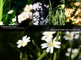 Wallpaper-Pack - Nature II by MadPotato