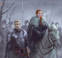 Sansa and Brienne by XiaTaptara