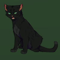 Hollyleaf by th1stlew1ng