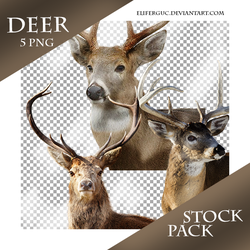 Deer - Stock Png Pack (2) by Eliferguc