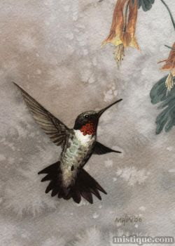 Hummingbird by MistiqueStudio