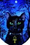 Fb19-Cat by LicamtaPictures