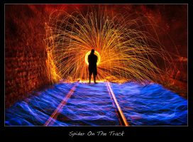 Spider On The Track by brentbat