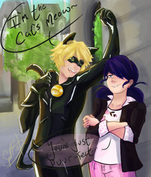 -REQUEST- MariChat by Spellbird