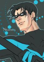 Nightwing by ivory-dusk