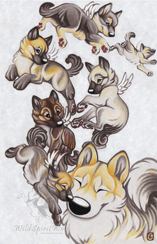 Aria And Pups - Light Chasing by WildSpiritWolf