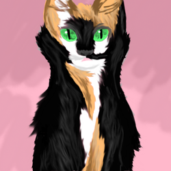 Tortoiseshell Cat by TropicalLeopard