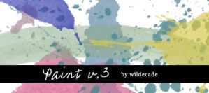 Paint v.3 by wildecade