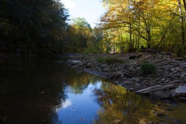 Reflection in creek by FOTOSHOPIC