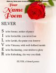 Silver's name poem by FoxyPirate56912