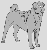 Dog Template - Shar Pei by NaruFreak123-Bases