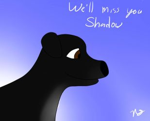We'll miss you Shadow by AuraMaster-Lucario