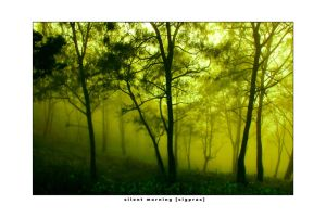 silent morning :2 by sigpras