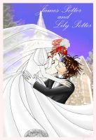 Wedding day James Lily Potter by cyberhell