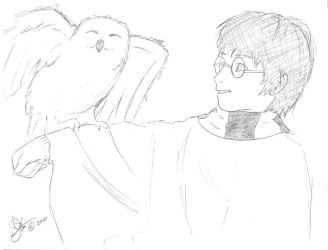 Harry and Hedwig by Nausicaa-7