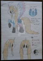 MLP: Oc Galaxy Jumper by Elmer157Typhlosion
