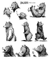 Bear Character Designs by BMalley