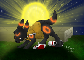 Wayne the Umbreon by Threehorn