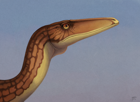 coelophysis portrait by tnilab-ekneb121