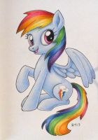 MLP Rainbow Dash 2017 2 by andpie