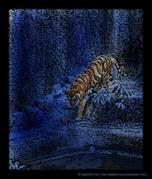 Tiger in Blue Paradise by sapphire-pyro