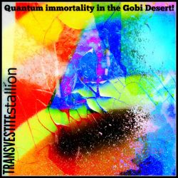 Quantum Immortality in the Gobi Desert cd cover by MushroomBrain