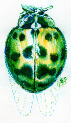 punch beetle green by lunelac