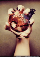 Yveltal Pokeball's